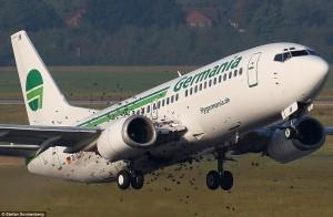 Can a bird strike bring down a plane?